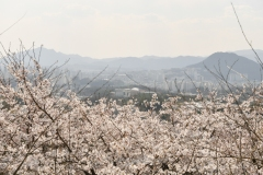 2019_seoul_Kubongsan_Observatory_Cafe_6915