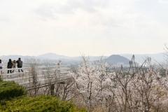2019_seoul_Kubongsan_Observatory_Cafe_6930