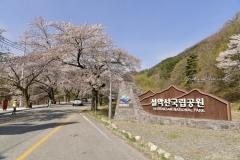2019_seoul_Seoraksan_National_Park_7072