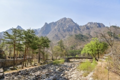 2019_seoul_Seoraksan_National_Park_7172