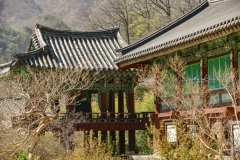 2019_seoul_Seoraksan_National_Park_7189